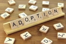Quelle est la procédure à suivre pour une adoption plénière d'enfant en France ou à l'étranger ?